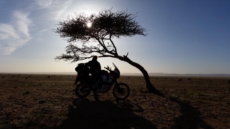 Marruecos En Moto10