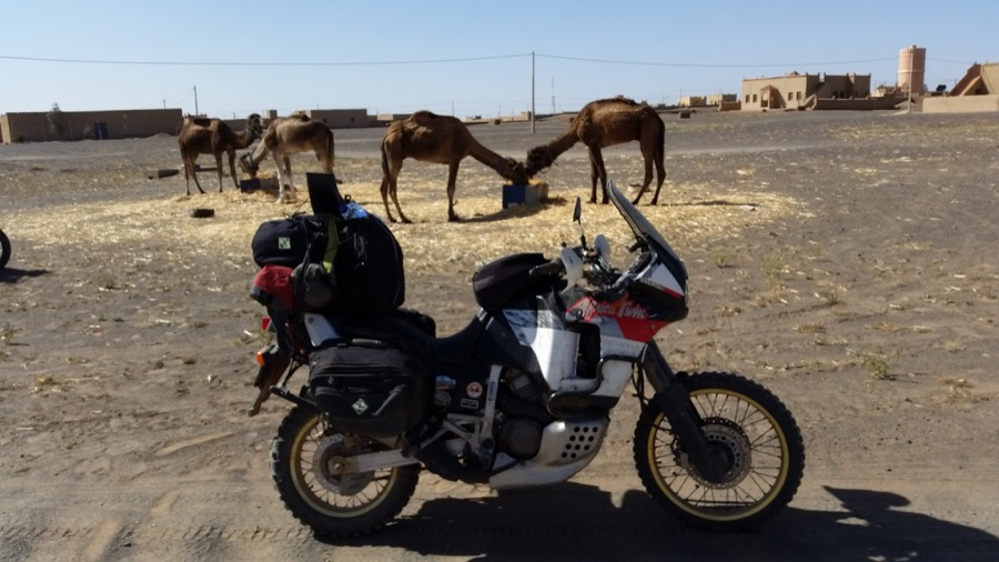 Marruecos En Moto20